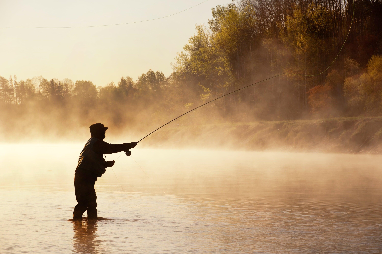 Красивые картинки рыбалки, днем водителя приколом